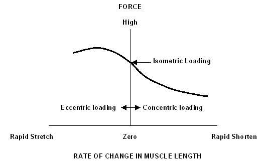 Grafiek van de kracht-snelheid relatie