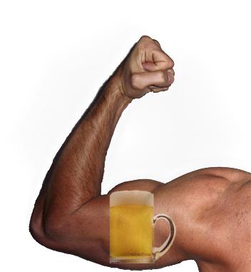 De invloed van bier op het trainingseffect